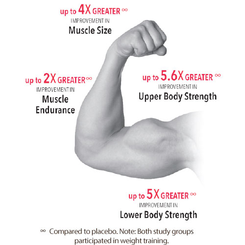 Mens Multi / Muscle Accelerator Arm Chart