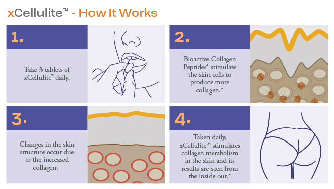 xCellulite How it Works